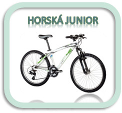 Kategorie juniorská horská kolo 4Ever